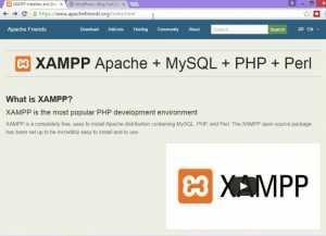 apche-friends-website